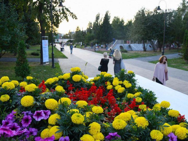 В Татарстане прогнозируются дождь и гроза