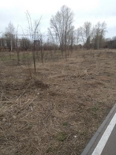 Казанцы жалуются, что территорию одного из парков не чистят