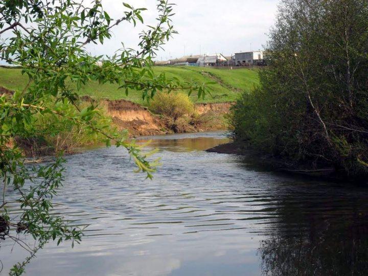 В Татарстане в реке Зай обнаружили десятикратное превышение азота нитритного