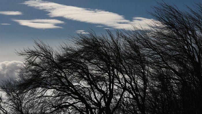 Жителей Татарстана предупреждают о грозе и сильном ветре