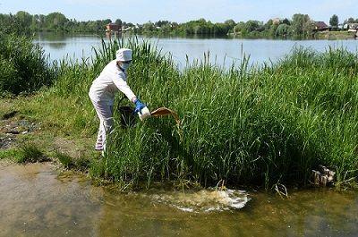 В Казани от комаров обработали 44 водоема