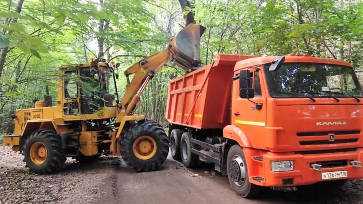 В Татарстане на территории лесничества ликвидировали свалку