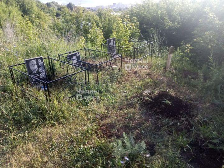 В Челнах появилось импровизированное кладбище для домашних животных