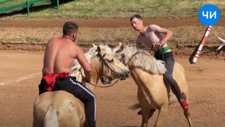 В Челнах победителем соревнования по борьбе на лошадях стал житель Лениногорска