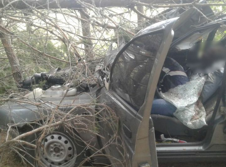 За сутки в Татарстане в ДТП погибли 9 человек