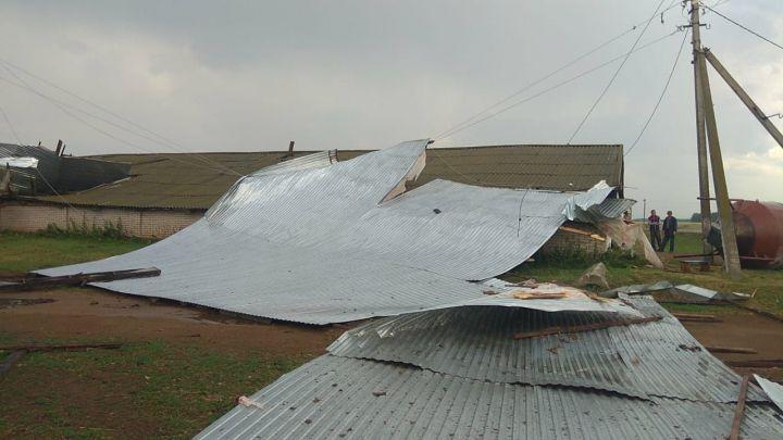 В Татарстане сильный ветер снес кровлю двух частных домов и фермы