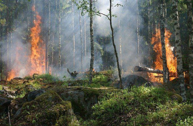В Татарстане из-за жары продлили штормовое предупреждение