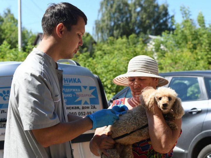 24 июля в поселок Северный приедет мобильный пункт вакцинации собак