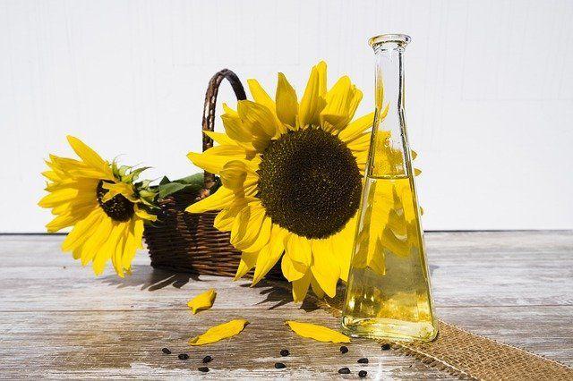 В России на 17% снизилось производство подсолнечного масла