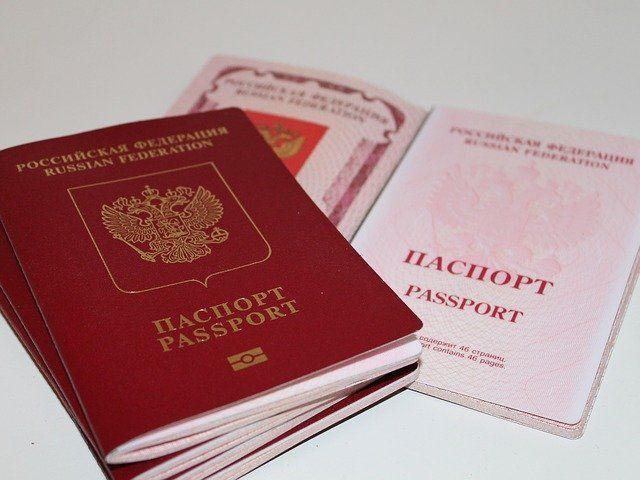 Ильдар Гильмутдинов предложил добавить в паспорт графу «национальность»