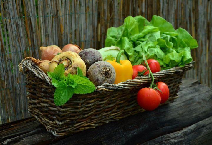В Татарстане создали рабочую группу, которая будет контролировать цены на овощи