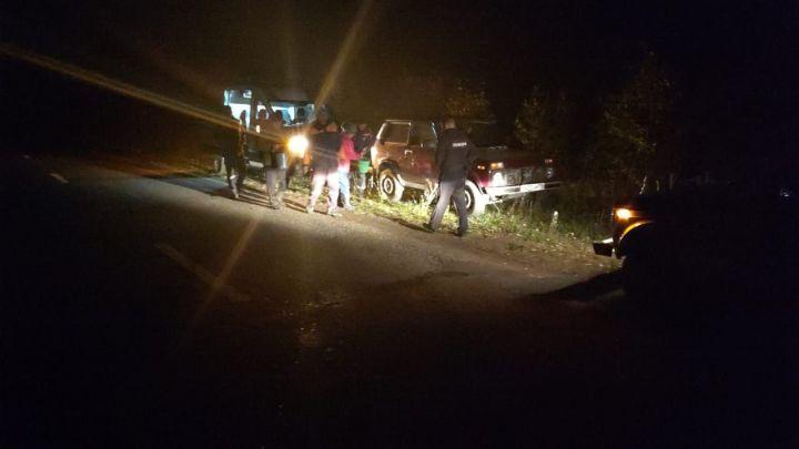 Два человека, собирая грибы, заблудились в Боровецком лесу