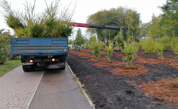 В Набережных Челнах за день высадили более 400 деревьев