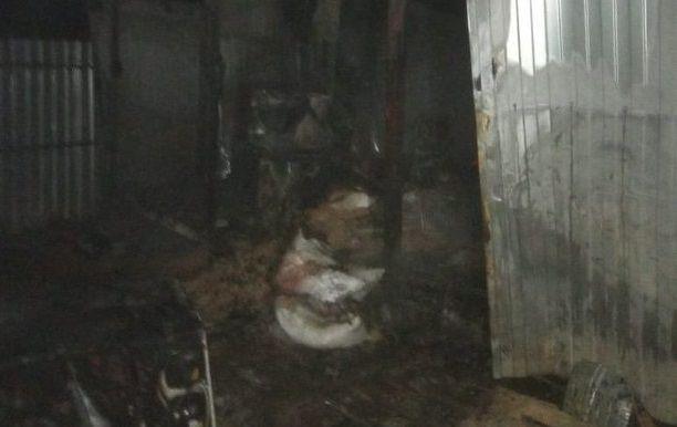Из горящего приюта в Татарстане спасли 130 собак
